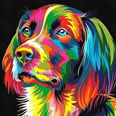 el perro arcoiris sonrie en Cice 4