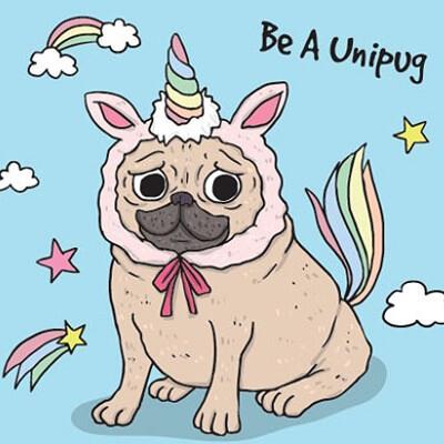 el perro arcoiris sonrie en Cice 6
