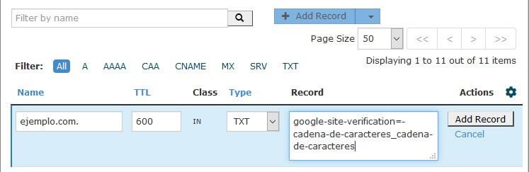 tutorial search console cpanel zone record